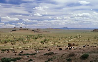 Khogno Khan Uul, Mongolia