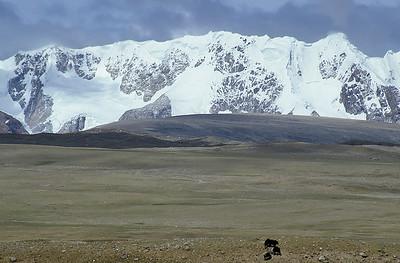 Shisha Pangma base camp, Tibet