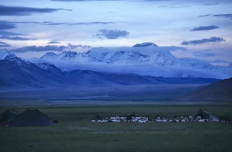 Cho Oyu (8.201m) at dawn, Tingri, Tibet