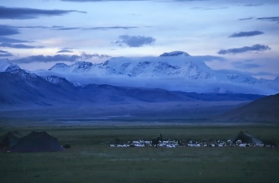 Cho Oyu (8.201m) at dawn, Tingri, Tibet