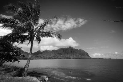 Windward coast of Oahu, Hawaii