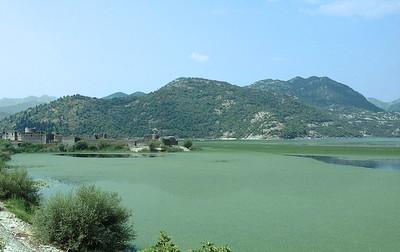 Scutari lake, Montenegro