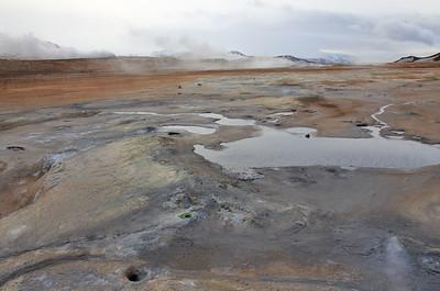 Hvier, Iceland