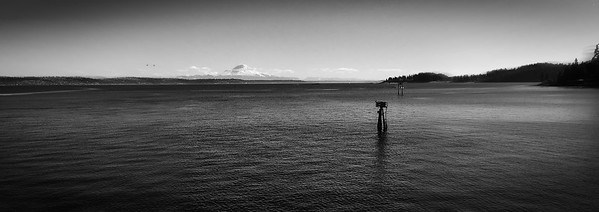 Mt. Rainier from Bainbridge island, Seattle, USA