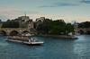 Rio Senna y la Île de la Cité