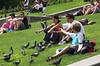 Alimentando palomas
