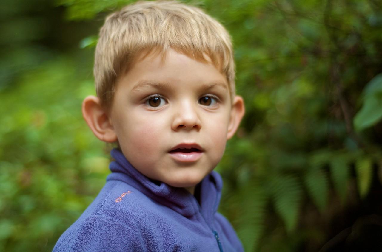 Max pasendo por un bosque, pero un bosque entero, en mitad de Vancouver.