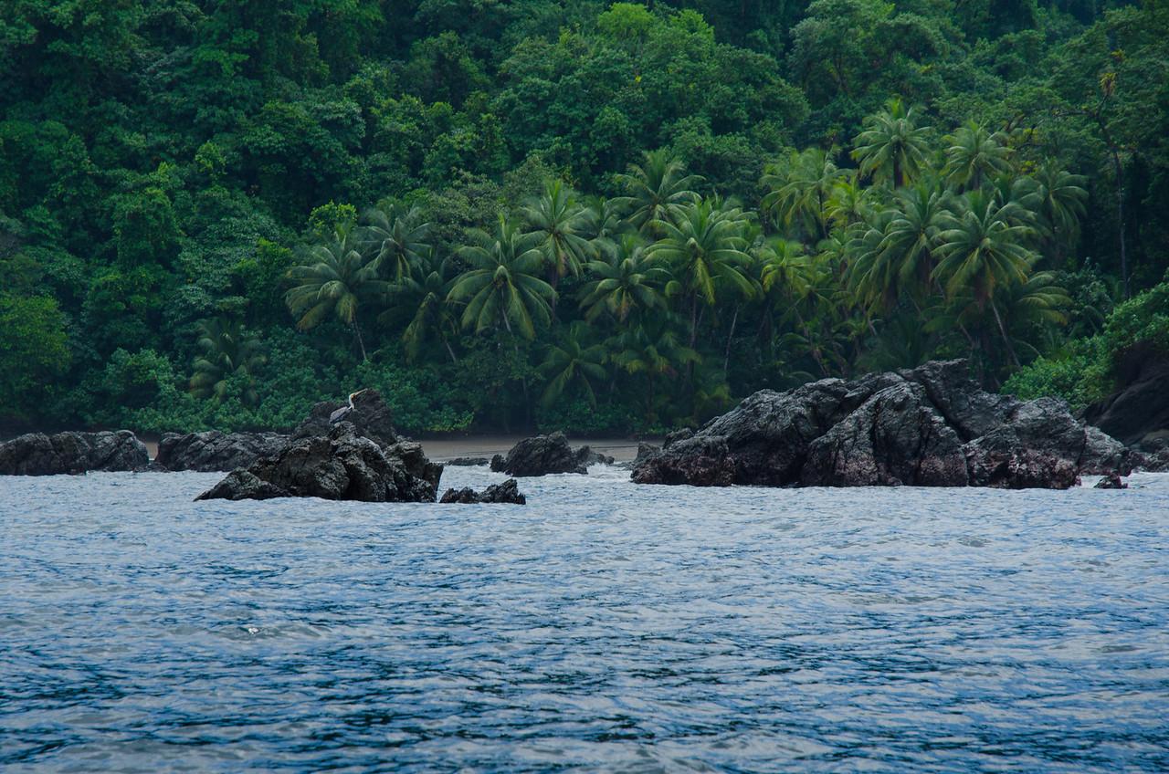 Isla de los Caños.