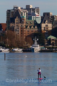 Standup Paddle Board in Victoria Harbour