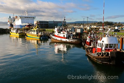 Boats at Ogden Point