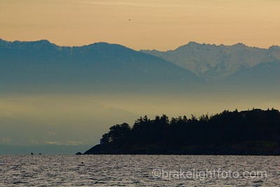 Albert Head & the Olympic Peninsula