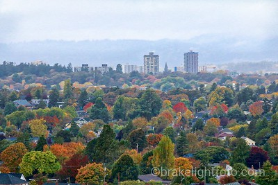 Fall Colours from Gonzales Hill
