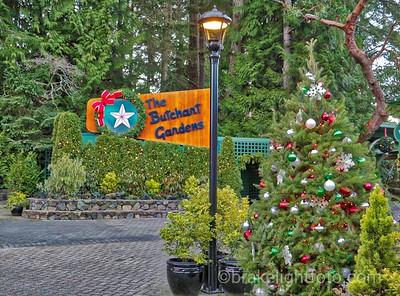 Butchart Gardens Christmas
