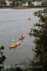 Kayaks from Point Ellice House