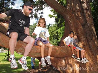 Climbing Trees in Beacon Hill Park