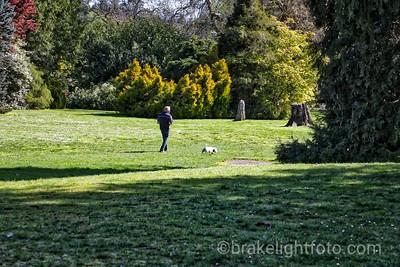 Dominion Brook Park