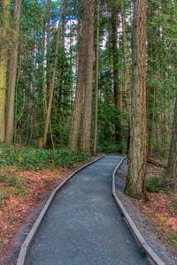 Francis/King Regional Park