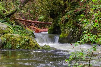 Goldstream River