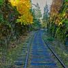 E&N Railway near the Niagara Trestle