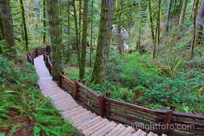 Stairway to Goldstream Waterfall