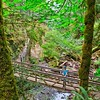 Hiking to Goldstream Trestle