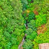The Niagara Creek from the Goldstream Trestle
