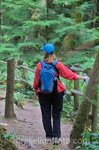 McKenzie Bight Trail