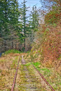 E&N Railline near Portage Park