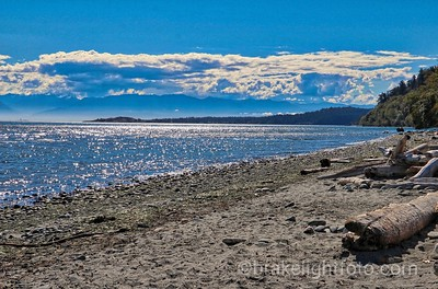 Witty's Lagoon Beach