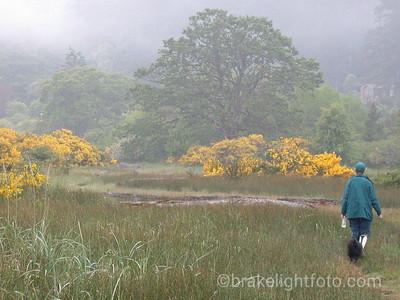 Hiking Witty's Lagoon