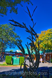 Oak Bay Street Art