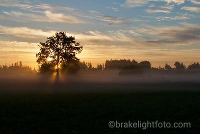 Saanich Pennisula Sunrise