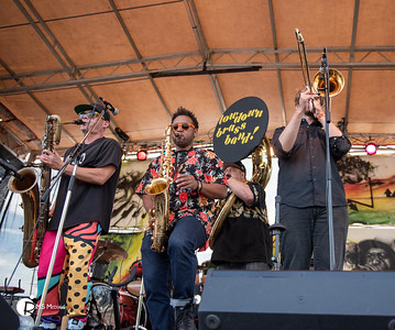 LowDown Brass Band | Victoria Ska and Reggae Festival | Victoria BC