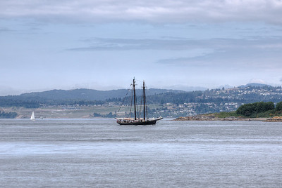 Sailing Ship - Victoria, Vancouver Island, British Columbia, Canada