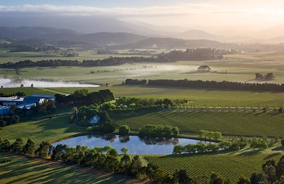 Yarra Valley from a balloon