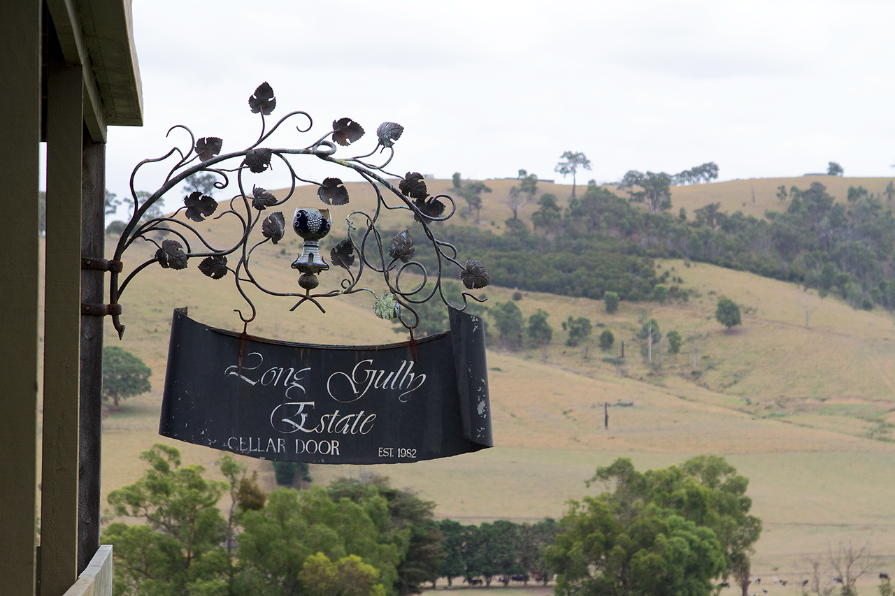 things to do in healesville
