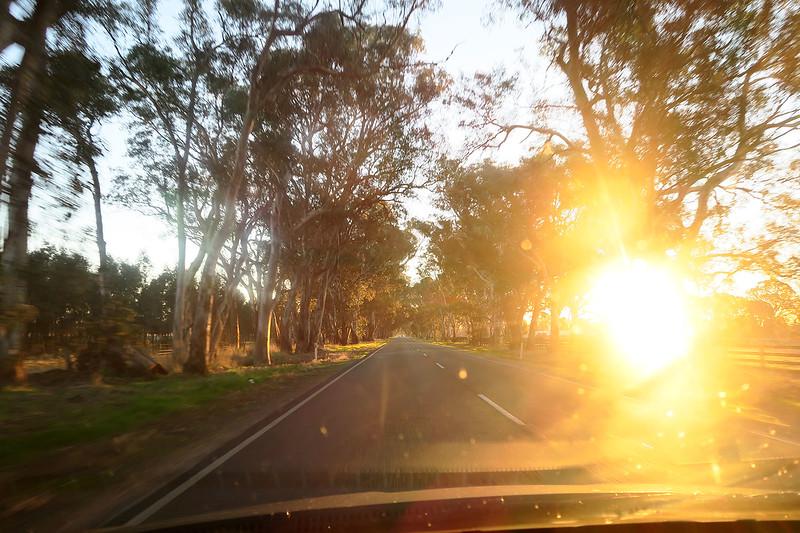 reasons to road trip australia