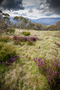 Victorian High Country, Australia