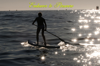 Made a poster with this one - paddleboard race