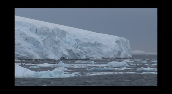 Antarctica DVD