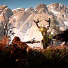 Horizon Zero Dawn™_20170304092238