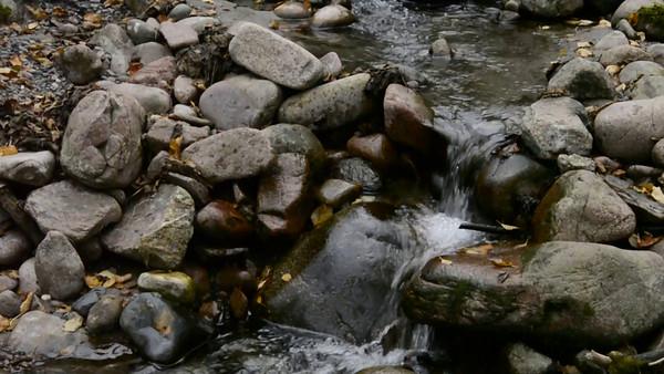 Babbling Brook