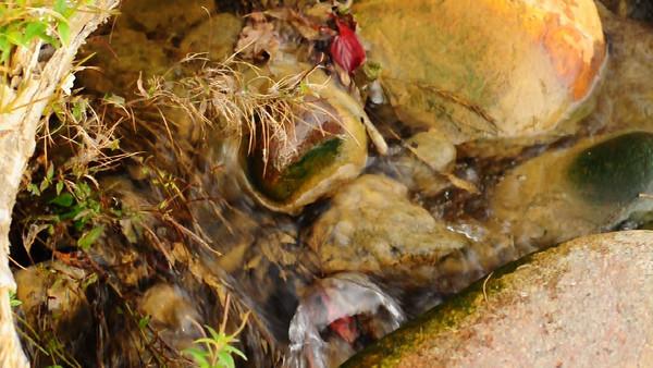 Babbling Brook, Flowing Water