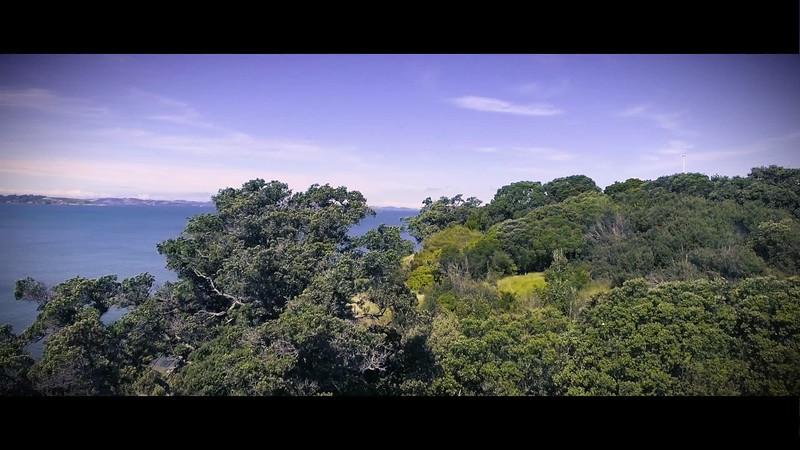 Wild Auckland Drone Reel