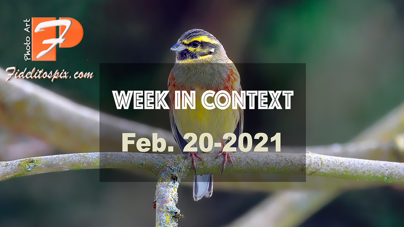 Week in Context - Feb. 20