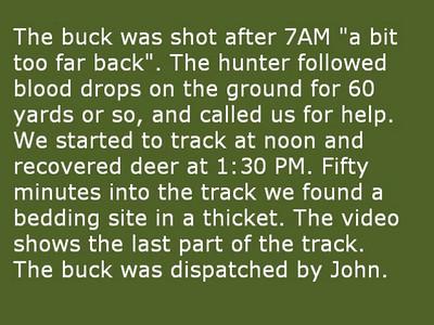 Joeri recovers first deer of the 2010 season