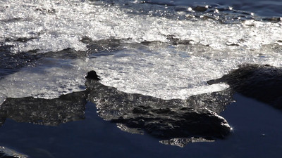 Close-up of ice floes