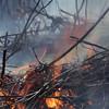 Burning twigs