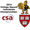 X 2014 WCSA Ind Ramsay Cup Finals  Game 3