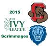 3 2015 ILS Cornell Columbia
